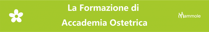 banner accademia
